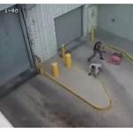 Felkavaró videó: Hidegvérrel lelőtte a megbilincselt rabot egy rendőr
