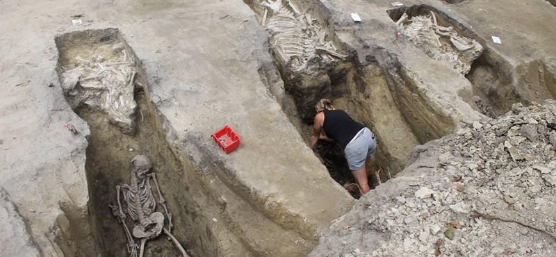 Fotók: Egy szegedi családi ház telkén került elő több komplett avar kori sír