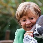 Bájos fotó készült Merkelről és a makiról