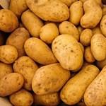 Krumpli, kávé, virágméz, gyulai kolbász: gazdag csomagot kaphatnak az újpesti nyugdíjasok