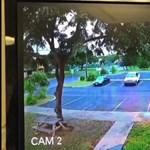 Videó: ilyen a kocsilopás Hawaii-módra, egészen egyedi