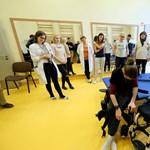 Csúcstechnológiás eszközökkel állítják lábra a mozgáskorlátozottakat Pécsen