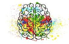 Mi történik az agyunkban, amikor új nyelvet tanulunk?