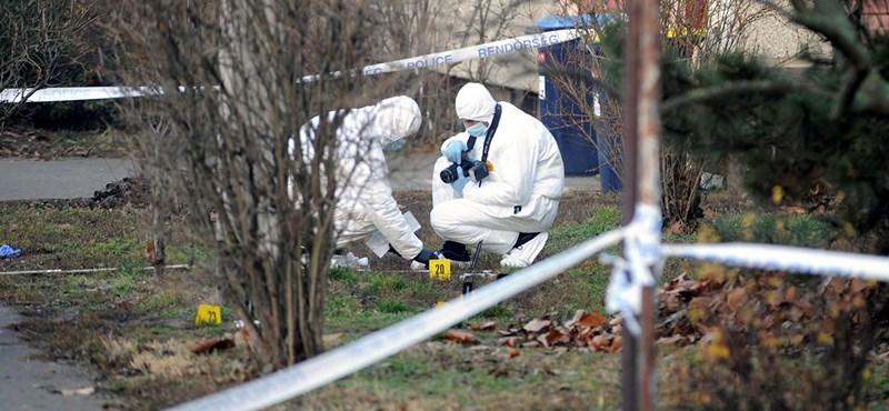 Kétszer annyi gyilkosság történhet Magyarországon, mint amennyit a rendőrség állít