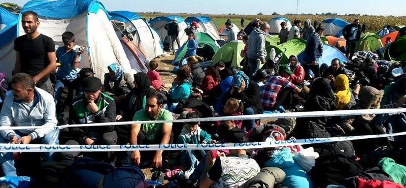 Feladták a rendőrök a menekültek regisztrációját?