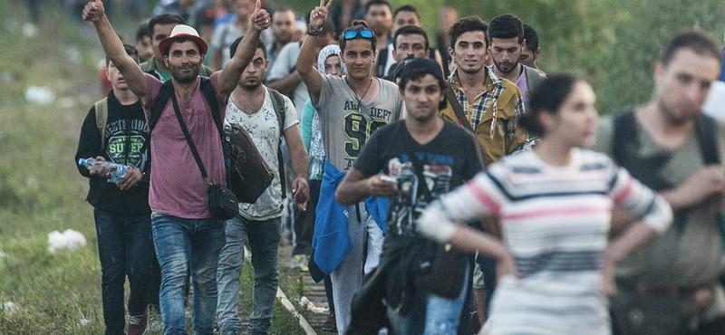 Fotók: tömött sorokban érkeznek a menekültek Röszkénél