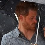 Harry herceg védi a környezetet, csak épp vadászik