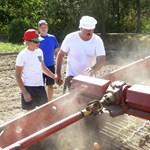 Besegített a krumpliszedésbe a fehérorosz elnök - fotók