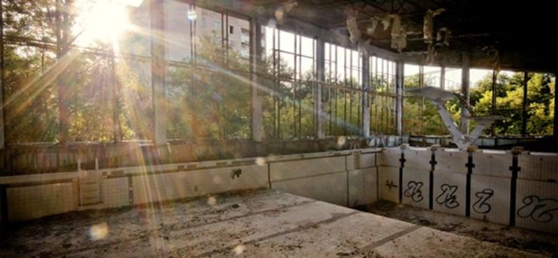 Katasztrófát okozhat a csernobili kísérteterdő