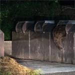 Szilveszterkor Büdösfürdőn támadt a medve