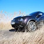 Nissan Juke Shiro teszt: torkos borz