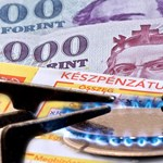 Kétszer annyit költ a fizetéséből rezsire egy magyar háztartás, mint egy osztrák