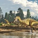 Találtak egy eddig teljesen ismeretlen dinoszauruszfajt