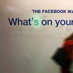 Roger McNamee volt Facebook-befektető: Ideje visszaszerezni az életünket
