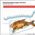 Magyar halfogyasztási statisztika: tipikus bűvészkedés a számokkal