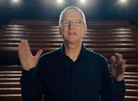 A végéhez közeledik Tim Cook megbízatása, de buta lenne otthagyni az Apple-t