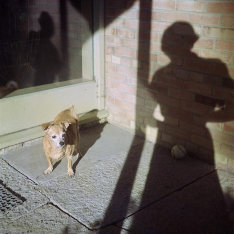 NE használd_! - Vivian Maier nagyítás - Önarckép, Chicago környéke, d.n. (c-print, 2013)