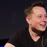 Két szót írt ki Twitterre Elon Musk, megbénult tőle Edward Snowden kedvenc üzenetküldője
