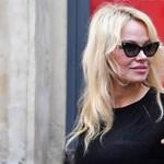 Pamela Anderson kiborult a gazdagokon, akik milliárdokat adományoznak a Notre-Dame újjáépítésére