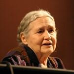 Meghalt Doris Lessing, Nobel-díjas brit írónő