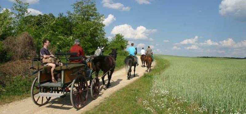 Szabadlábon Magyarországon - új útifilm-sorozat