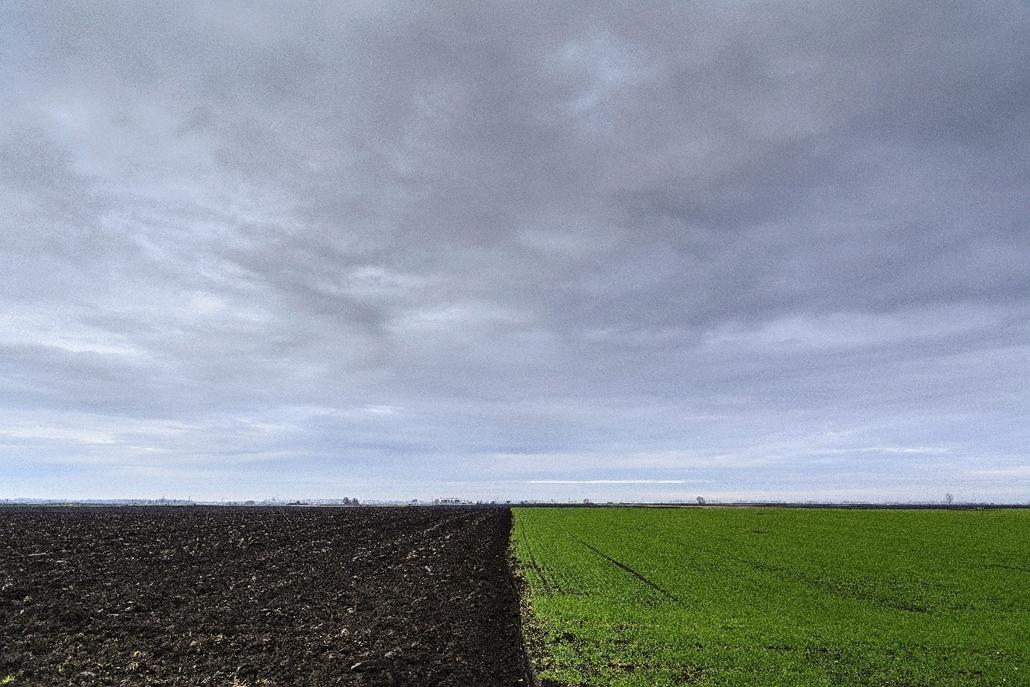 mti.14.12.03. - Debrecen: szántóföldek a határban - 7képei, debrecen, szántóföld, mezőgazdaság