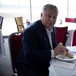 Orbán Viktor épp Horvátországban jár, bedobott egy bureket
