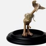 Bizarr szobrokat készít elhullott állatok csontjaiból egy művész