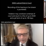 Margaret Atwood is reagált a macskafilteres online bírósági tárgyalásra
