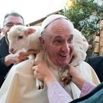 Ez volt Ferenc pápa első éve képekben – Nagyítás-fotógaléria