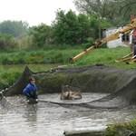 Több halat telepítenek a Kis-Balatonba