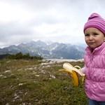 Jégcsákány és babahordó: gyerekkel Európa többezresein
