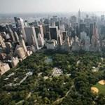 Nagy változás jön a New York-i autósok életébe