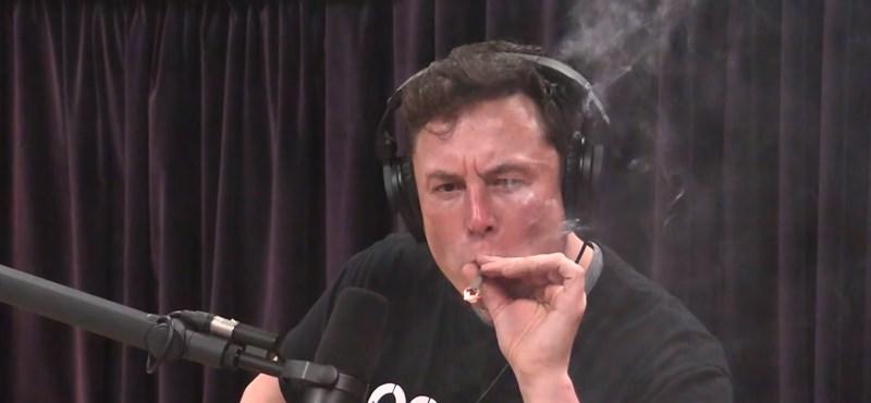 Elon Muskot hivatalosan technokirállyá koronázta a Tesla