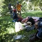 Nagyon gondolkodnak, hogy mi legyen a hajléktalanokkal