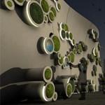 Amikor zöldellnek a falak is - egy régi-új építészeti megoldás
