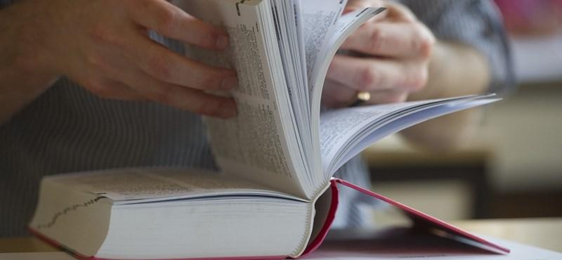 Néhány hónapon belül működésképtelenné válhatnak a nyelviskolák?