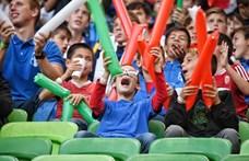 Bocsánatot kért a magyar–azeri meccs bírója az elvett gólért