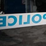 Felakasztotta kutyáját egy férfi Baranyában