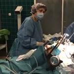 Agyműtétet közvetítenek élőben Pécsről