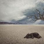 Lehet, hogy a klímakatasztrófa közelebb van, mint gondolnánk