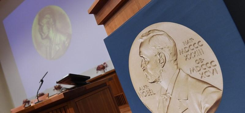 Nem ítélik oda idén az irodalmi Nobel-díjat