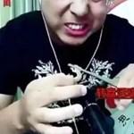 Élő videóban evett mérgező rovarokat egy vlogger – aztán belehalt