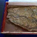 Ismeretlen gyík került elő egy Microraptor gyomrából