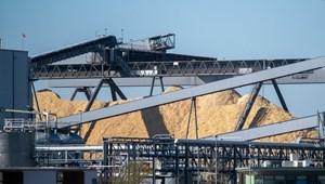 Döntött a holland parlament: kivezetik a biomasszát