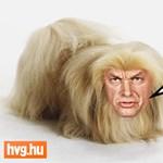 Tóta W.: A nagy Oroszország kovácsolta frigy