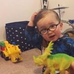Ez a kétéves kissrác többet tud a dínókról, mint te, és ezt be is bizonyítja