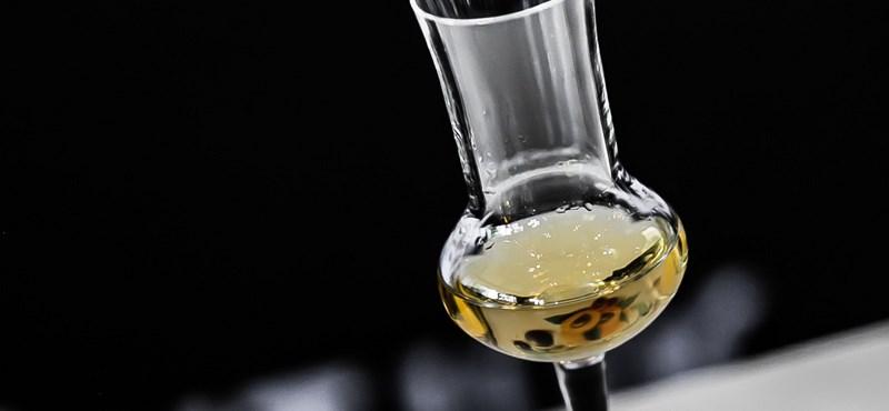Biotermékekkel és pálinkával hódítaná meg a világpiacot az agrárminiszter