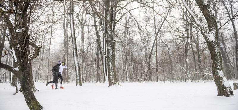 17 centi hó esett Tolnában