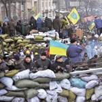 A németekhez fordult segítségért az ukrán ellenzék